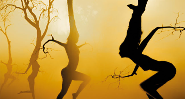 Tanz der 5Rhythmen ® nach Gabrielle Roth